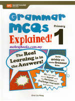 Grammar MCQs Explained Primary 1