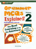 Grammar MCQs Explained Primary 2
