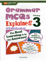 Grammar MCQs Explained Primary 3